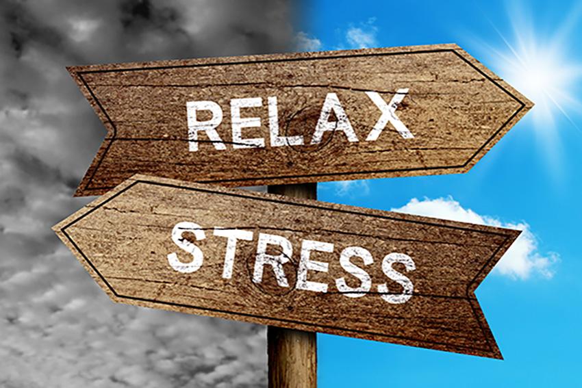 Série ateliers YOGA « Mieux gérer son stress »