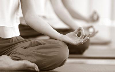 Programme des ateliers yoga 2020